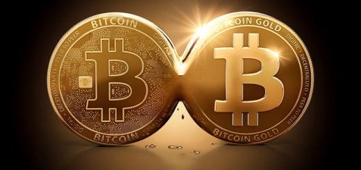 ФоркBitcoin Liza — новая монета или обман?
