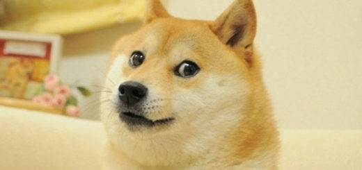 История DogeCoin: от мема до $ 1 млрд рыночной капитализации