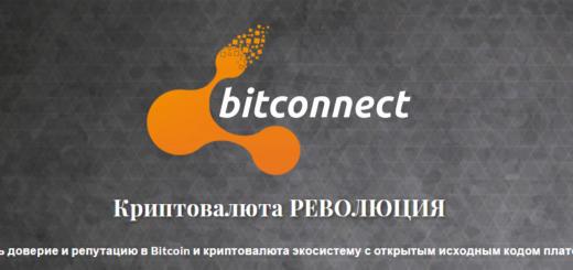 BitConnect не работает. Курс BCC упал с $ 460 до $ 5