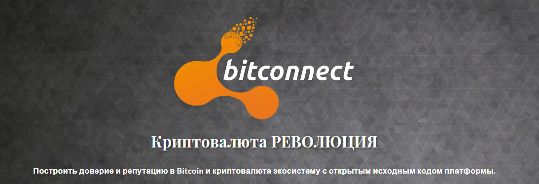 Пирамида BitConnect