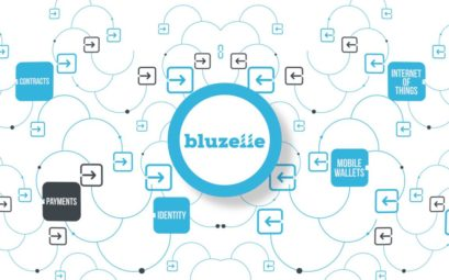 Криптовалюта Bluzelle BLZ