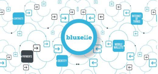 Криптовалюта Bluzelle BLZ — краткий обзор, прогноз курса и где купить монету