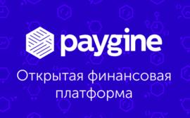 Paygine ICO