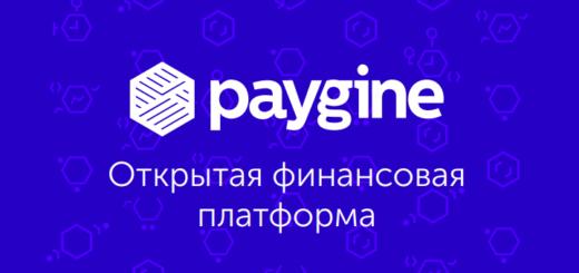 Paygine ICO — финансовая платформа на блокчейне для финтеха